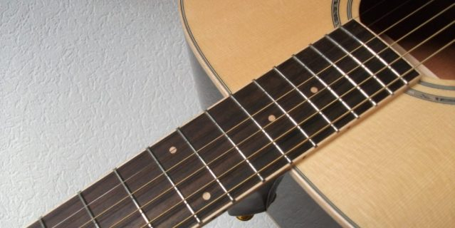 cropped-ibanez-aw30-ansicht-16.jpg