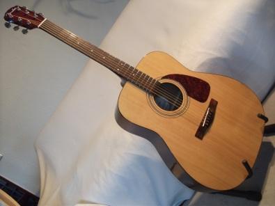 Fender DG 7 von vorne...