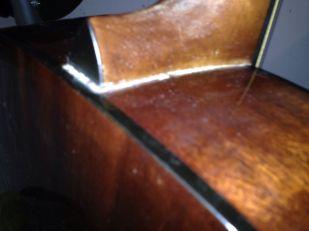 keine Gebrauchsspuren außer Rückseite - 12 saitige BR
