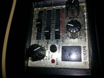 schöne Yamaha Compass 2 (1)