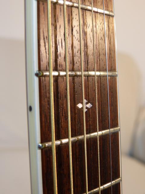 FG 450 SA - Griffbrett (4)