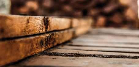 Photo by Chaabani Mohamed Dhia on Pexels.com